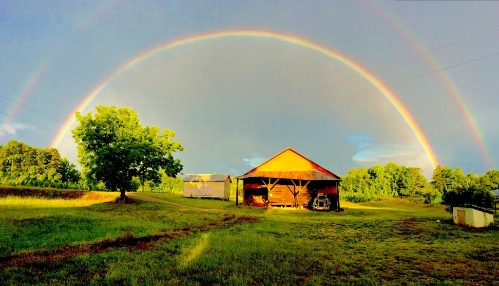 FarmScape Rainbow Barn