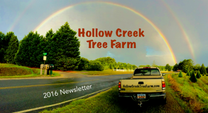 newlsetter-2016-rainbow-truck-800px